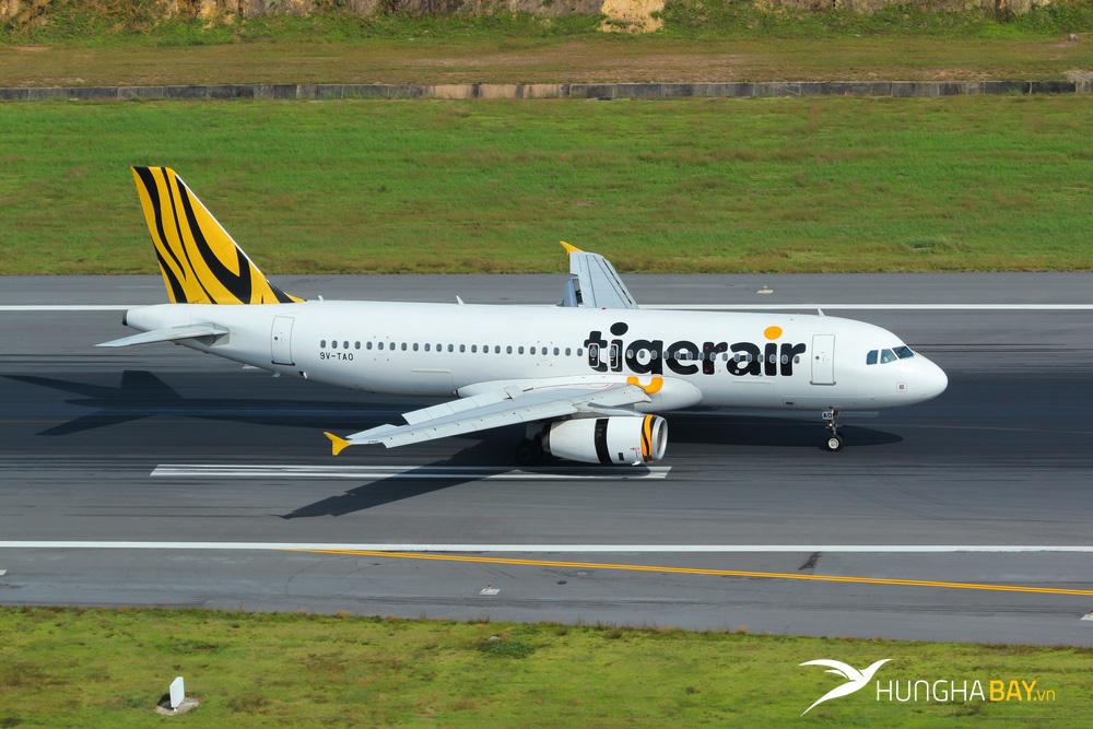 Mạng đường bay của hãng hàng không Tiger Airways