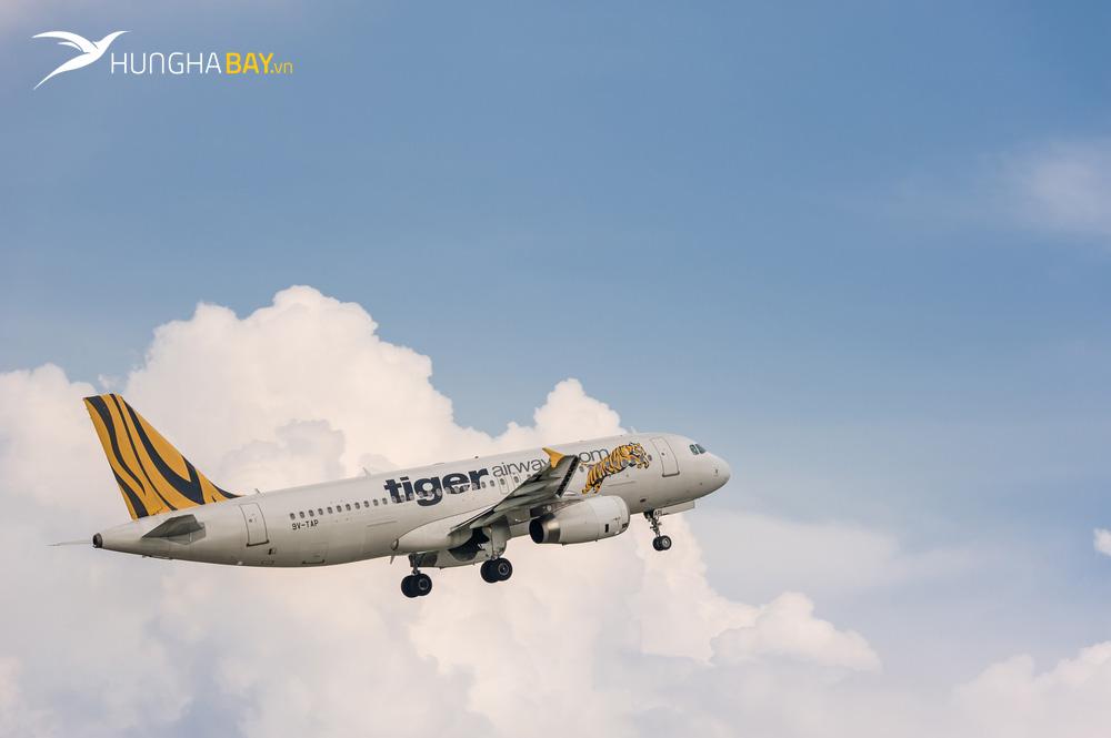 Tổng quan về hãng hàng không Tiger Airways