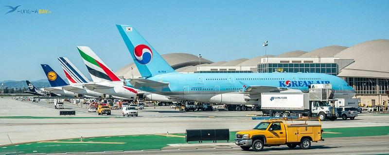 Các hãng hàng không khai thác chuyến bay đi Hà Nội